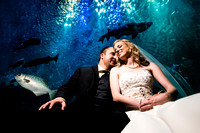 Samantha & Phillip Wedding- Pine Knoll Shores Aquarium Wedding